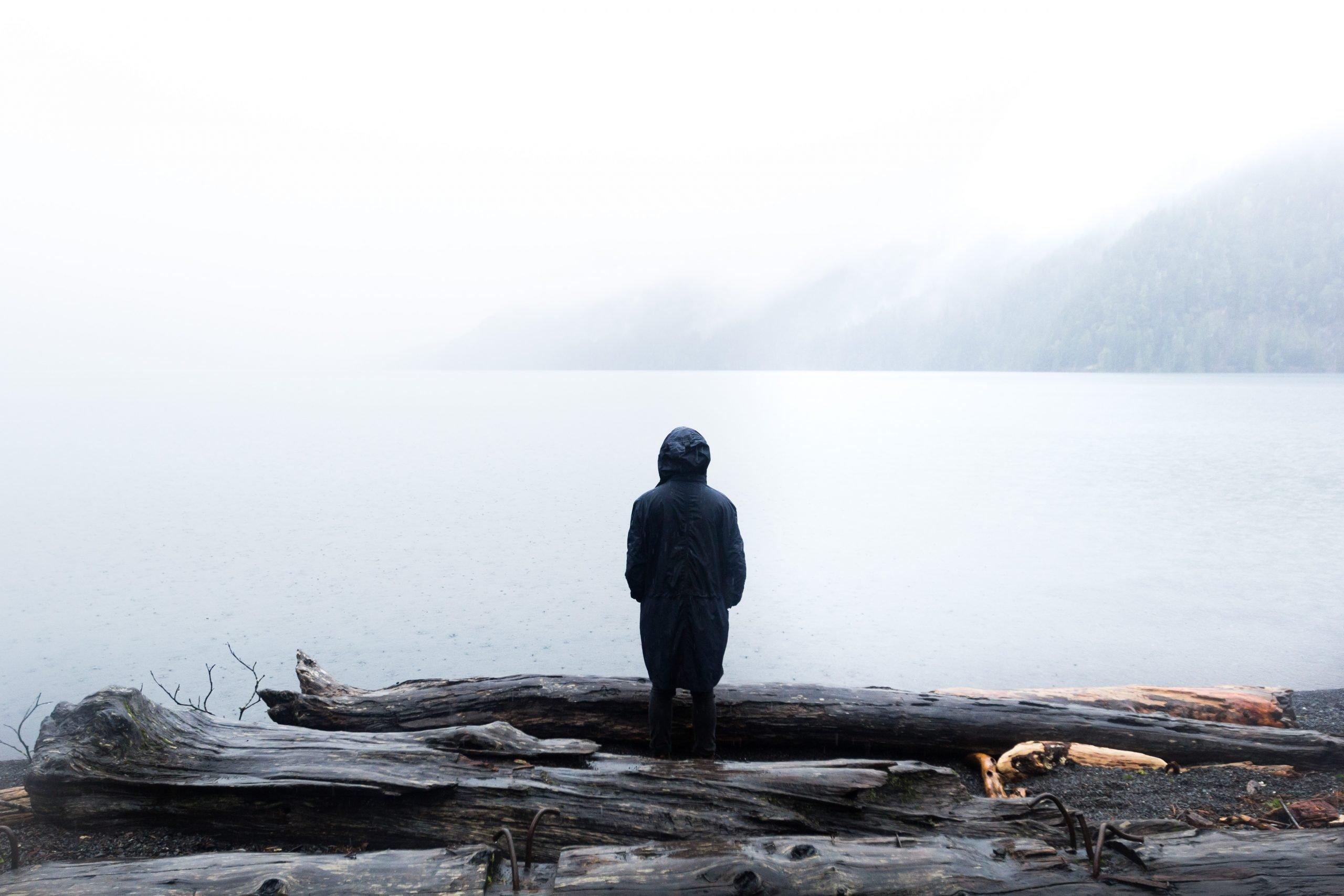 Man.LookingAtWater.Fog.Logs